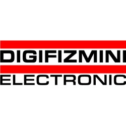 DIGIZIZMINI ELECTRONIC Decal